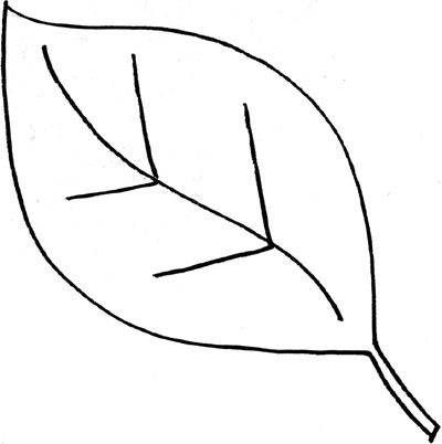 Leaves with holes it clipart black and white picture freeuse stock Black And White Leaves Clipart Group with 81+ items picture freeuse stock