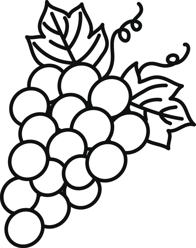 Black And White Flower clipart - Grape, Drawing, Flower, transparent ... jpg