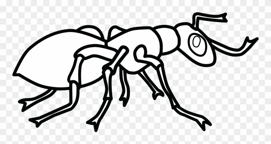 Black and white clipart of an ant picture royalty free download Free Clipart Of An Ant Images Clip Art Black And White Remarkable ... picture royalty free download