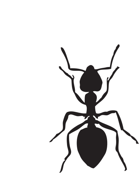 Black and white clipart of an ant clip art stock Free Ants Cliparts, Download Free Clip Art, Free Clip Art on Clipart ... clip art stock