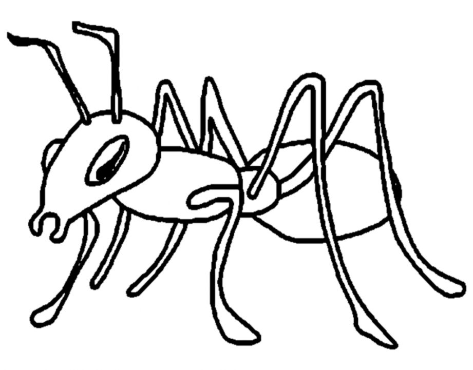 Black and white clipart of an ant png free library Ants Clipart Black And White | Wallpapers Inspire png free library