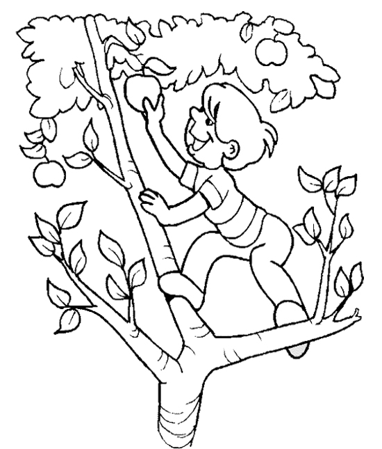 Black and white clipart of children picking apples jpg free stock Free Apple Picking Cliparts, Download Free Clip Art, Free Clip Art ... jpg free stock