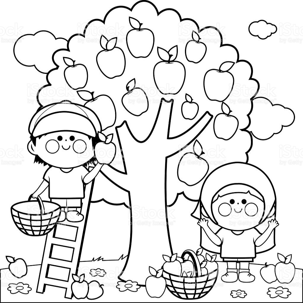 Black and white clipart of children picking apples jpg black and white download Apple Orchard Clip Art (106+ images in Collection) Page 1 jpg black and white download
