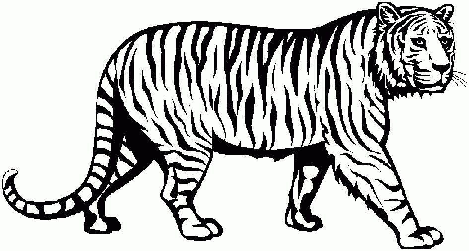 Black and white clipart of tiger image transparent library tiger clipart black and white elegant of cute tiger clipart black ... image transparent library