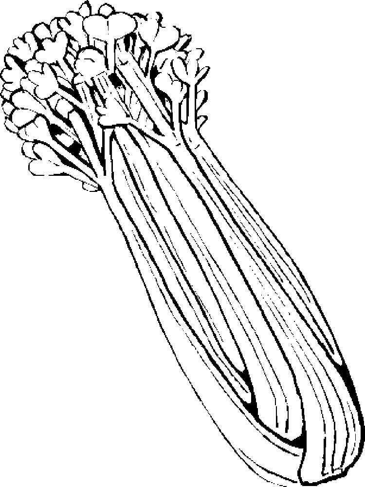 Black and white clipart ofcelery graphic library stock Celery clipart celery plant, Celery celery plant Transparent FREE ... graphic library stock