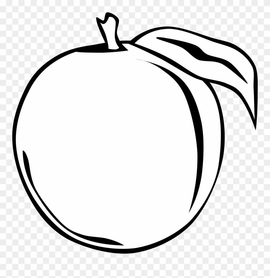 Black and white clipart orange clip freeuse download Orange Clipart Black And White Png Transparent Png (#64070) - PinClipart clip freeuse download