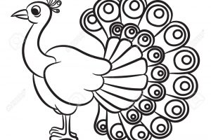 White peacock clipart free Peacock Drawing Black And White | Free download best Peacock Drawing ... free
