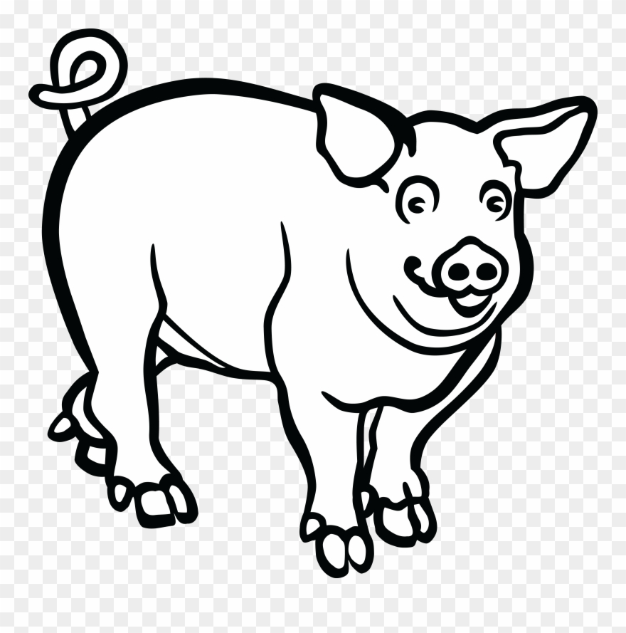 Black and white clipart pig with cigar image Wild Boar Line Art Drawing Black And White - Pig Lineart Clipart ... image