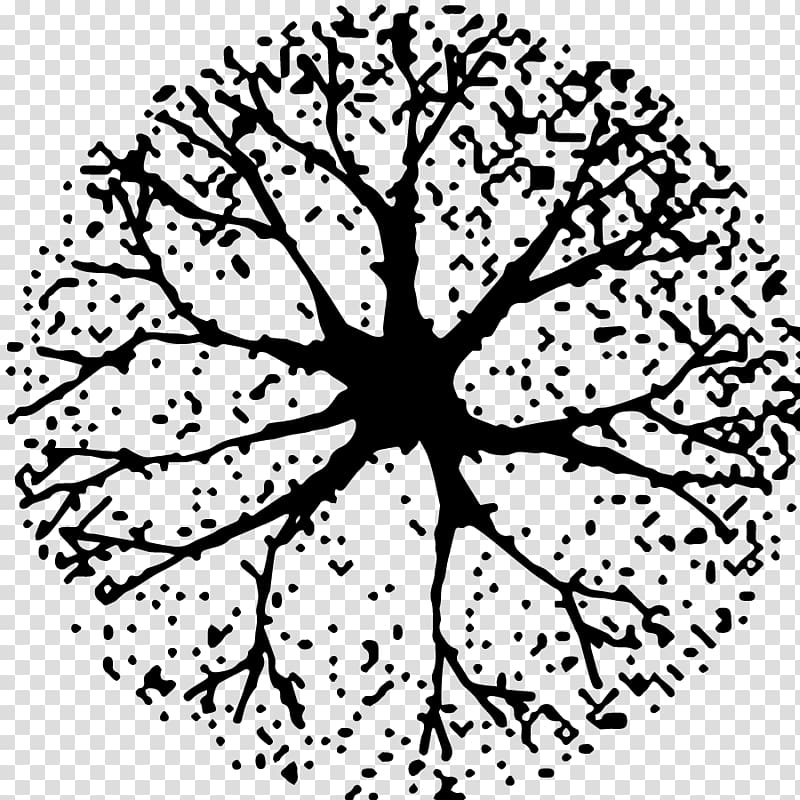 Black and white clipart plan clipart free Tree Black and white Woody plant , tree plan transparent background ... clipart free