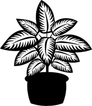 Black and white clipart plant freeuse download Black And White Plants Group with 73+ items freeuse download