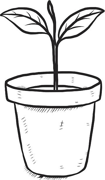 Plant black and white clipart clip art free Plant Black And White Clipart Pot Flower Line Drawing - Clipart1001 ... clip art free