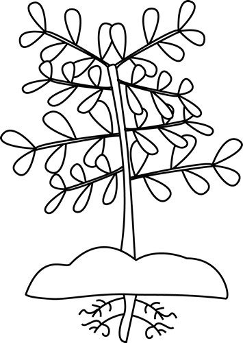 Plant black and white clipart banner stock Plant Black And White Clipart With Roots - Clipart1001 - Free Cliparts banner stock