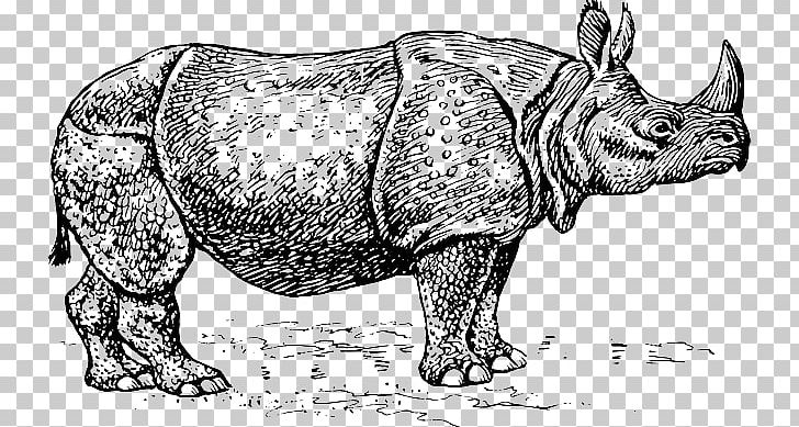 Black and white clipart rhinoceros vector royalty free stock Black Rhinoceros Silhouette PNG, Clipart, Black And White, Cattle ... vector royalty free stock