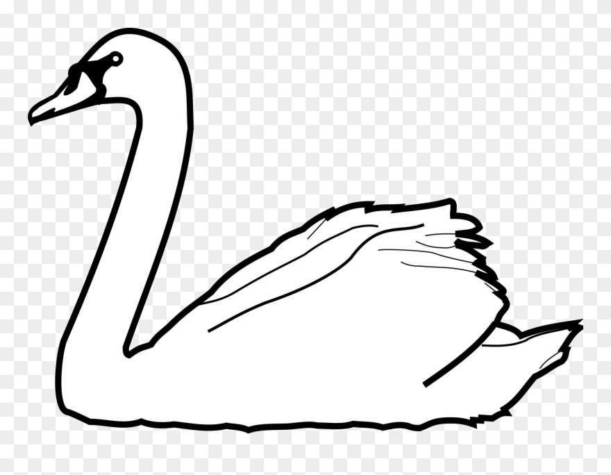 Swan black and white clipart png black and white library Swans Drawing At Getdrawings - Swan Clipart Black And White - Png ... png black and white library
