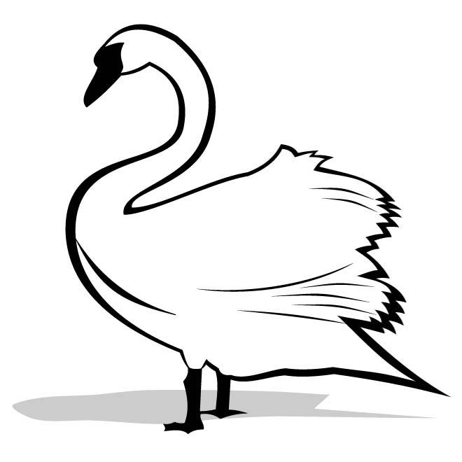 Swan black and white clipart clipart free download SWAN CLIP ART GRAPHICS - Free vector image in AI and EPS format. clipart free download
