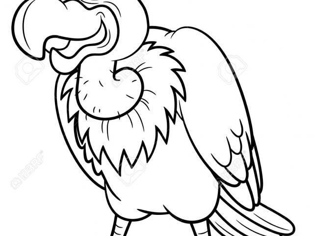 Download clip art on. Free black and white clipart of a vulture