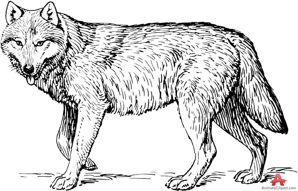 Wolf clipart black and white clip royalty free Wolf black and white clipart 6 » Clipart Station clip royalty free