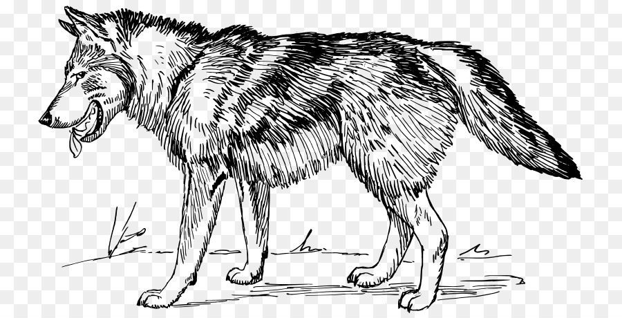 Wolf bw clipart clipart library Black And White Wolf PNG Transparent Black And White Wolf.PNG Images ... clipart library