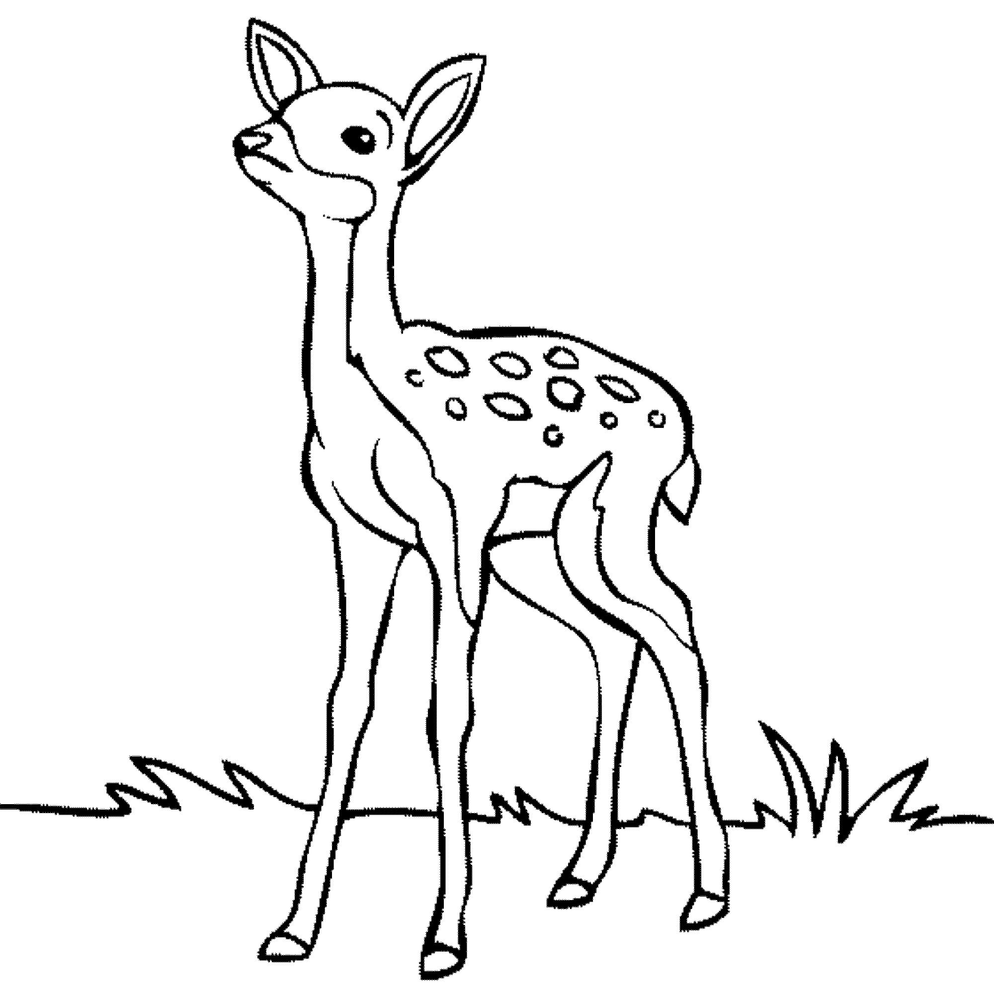 Black and white deer clipart banner library library Free black and white deer clipart 3 » Clipart Portal banner library library