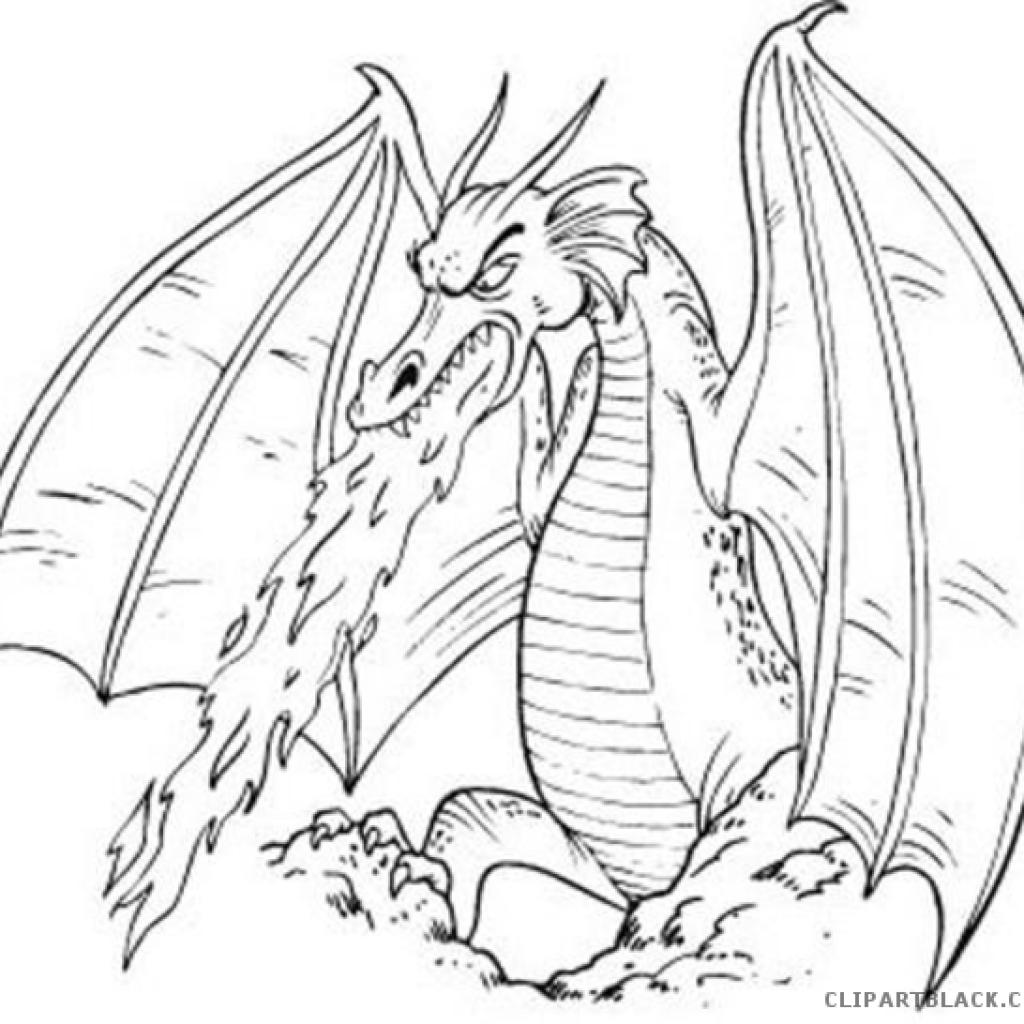 Black and white dragon clipart graphic transparent download Black And White Dragon Drawings at PaintingValley.com | Explore ... graphic transparent download