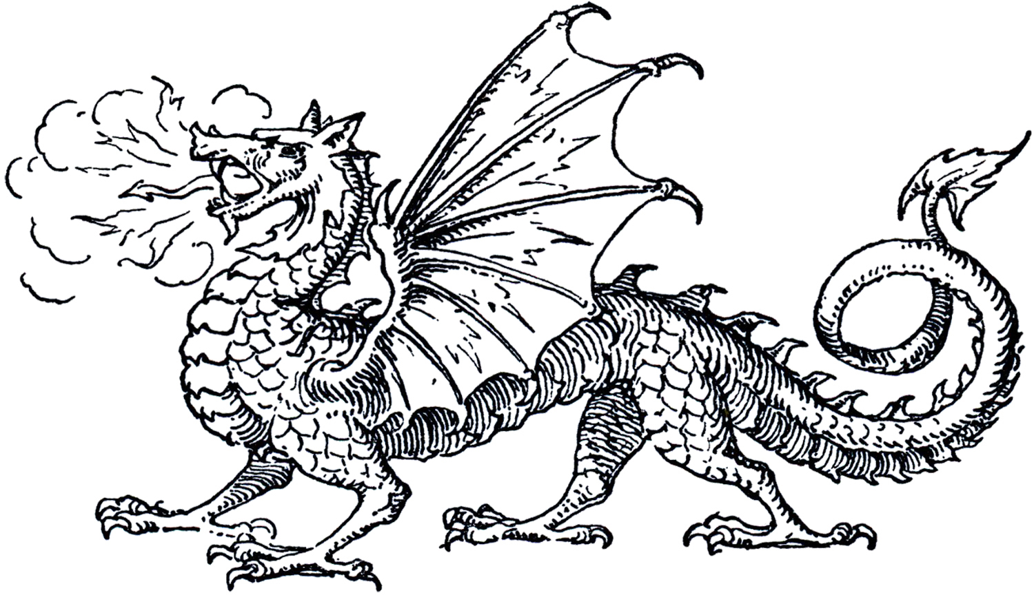 Black and white dragon clipart clipart freeuse library 9+ Dragon Clipart Black And White | ClipartLook clipart freeuse library