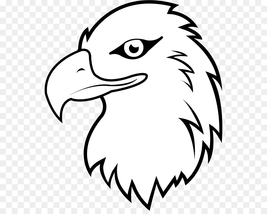 Black and white eagle clipart png download Bird Line Drawing png download - 600*709 - Free Transparent Bald ... png download