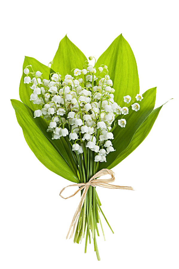 Black and white flower bouquet clipart picture black and white stock Lily of the valley Flower bouquet Stock photography Clip art - White ... picture black and white stock