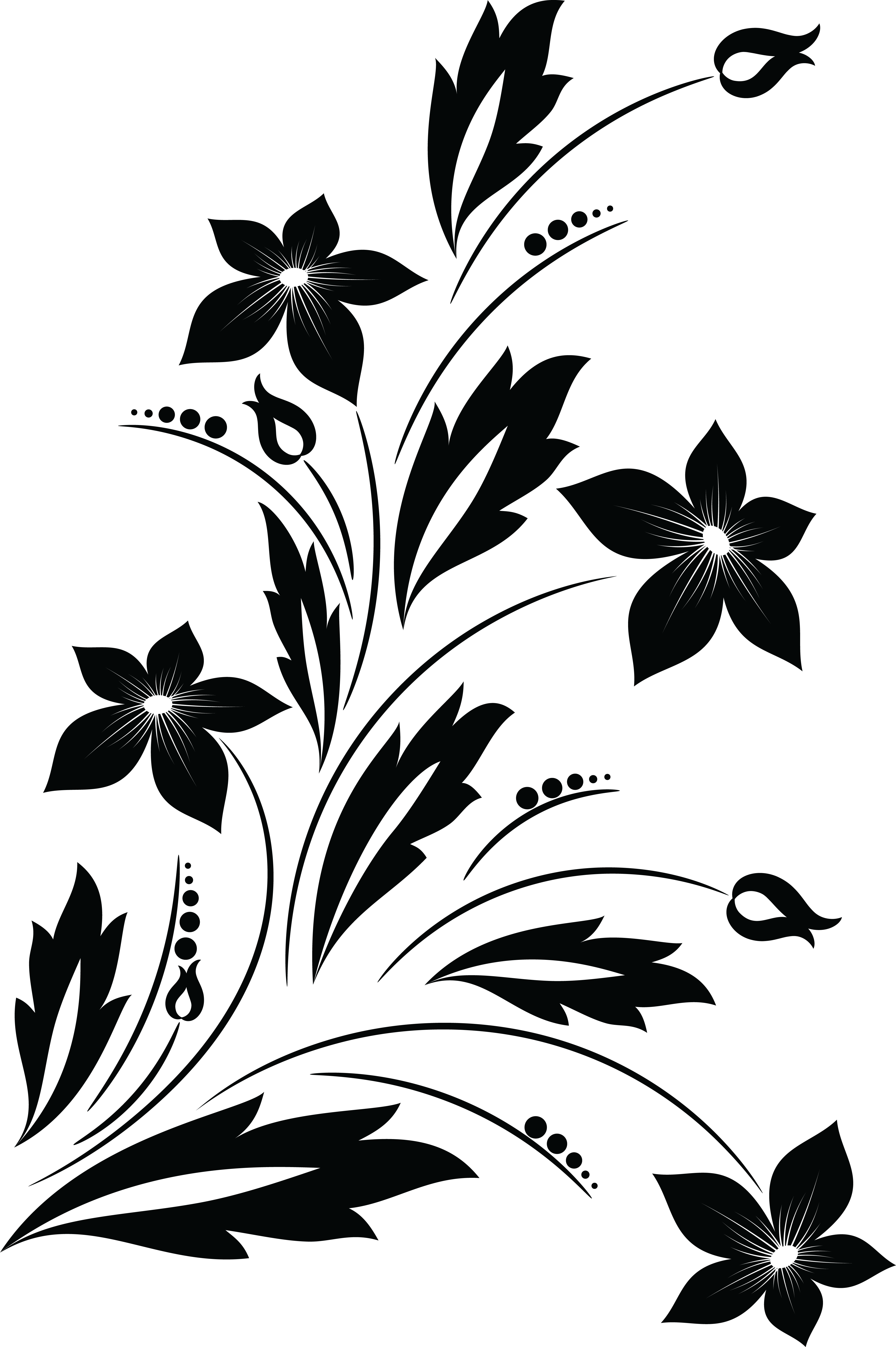 Flower clipart black and white png.  collection of floral