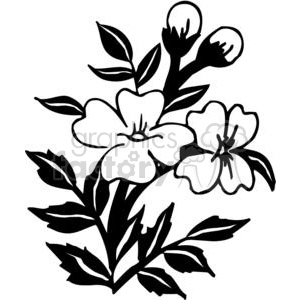 Black and white flower design clipart graphic transparent stock Two Black and white flowers clipart. Royalty-free clipart # 380106 graphic transparent stock