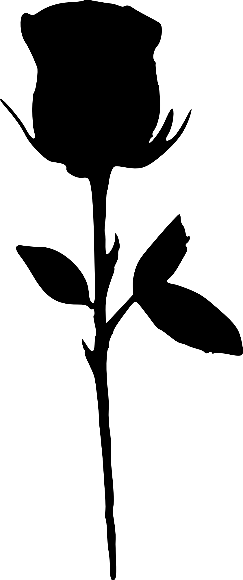 Flower stem black and white clipart svg free library Silhouette Black and white Clip art - rose outline 841*2000 ... svg free library