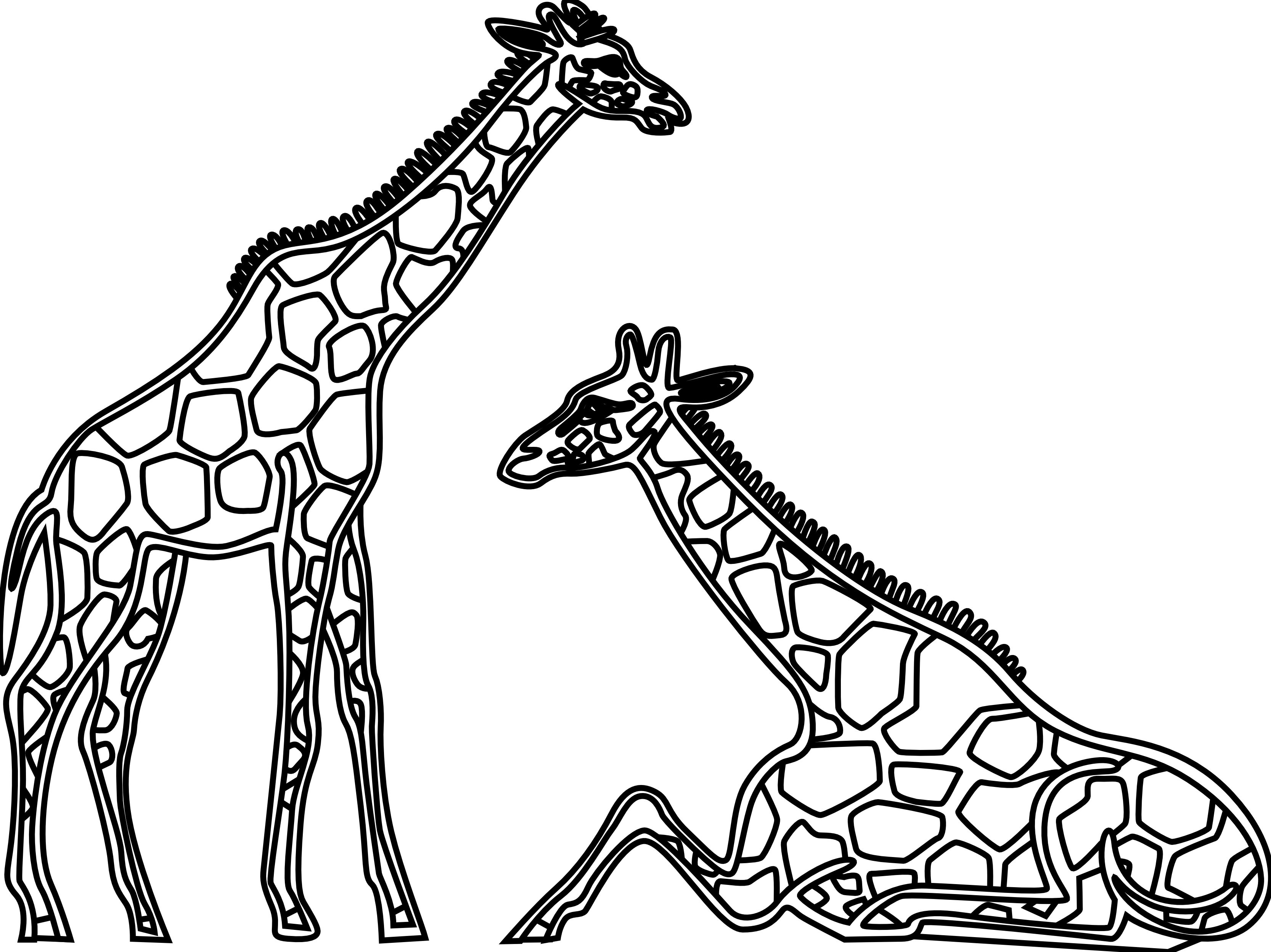 Free black and white clipart for giraffe. Panda images