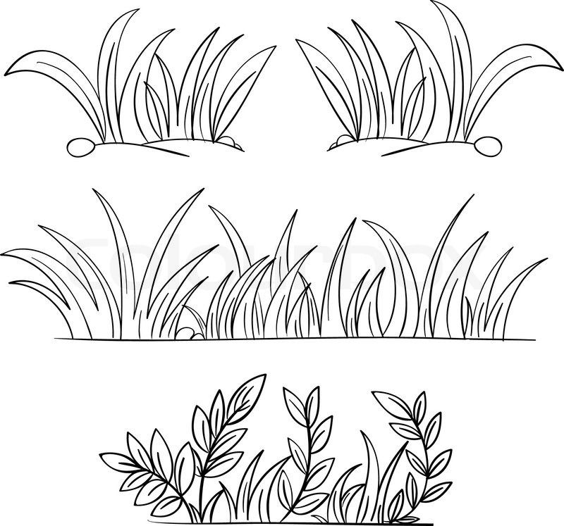 Grass outline clipart png download Grass Drawing Black And White Grass vector | Hair & Beauty | Grass ... png download
