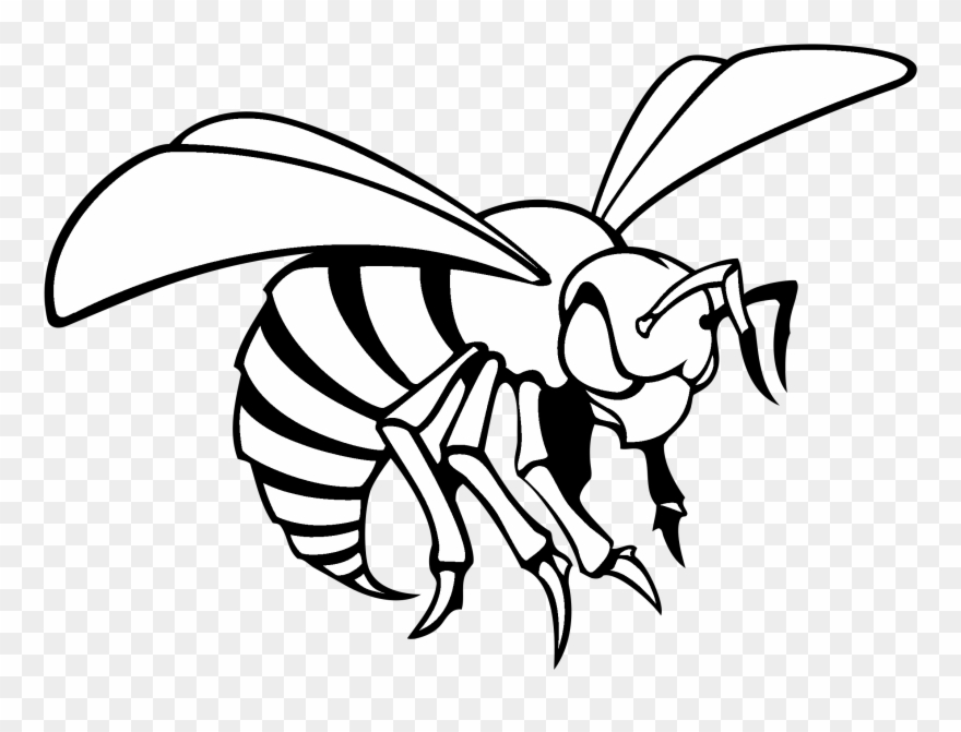 Black and white hornet clipart clipart free library Alabama State Hornets Logo Black And White - Alabama State ... clipart free library