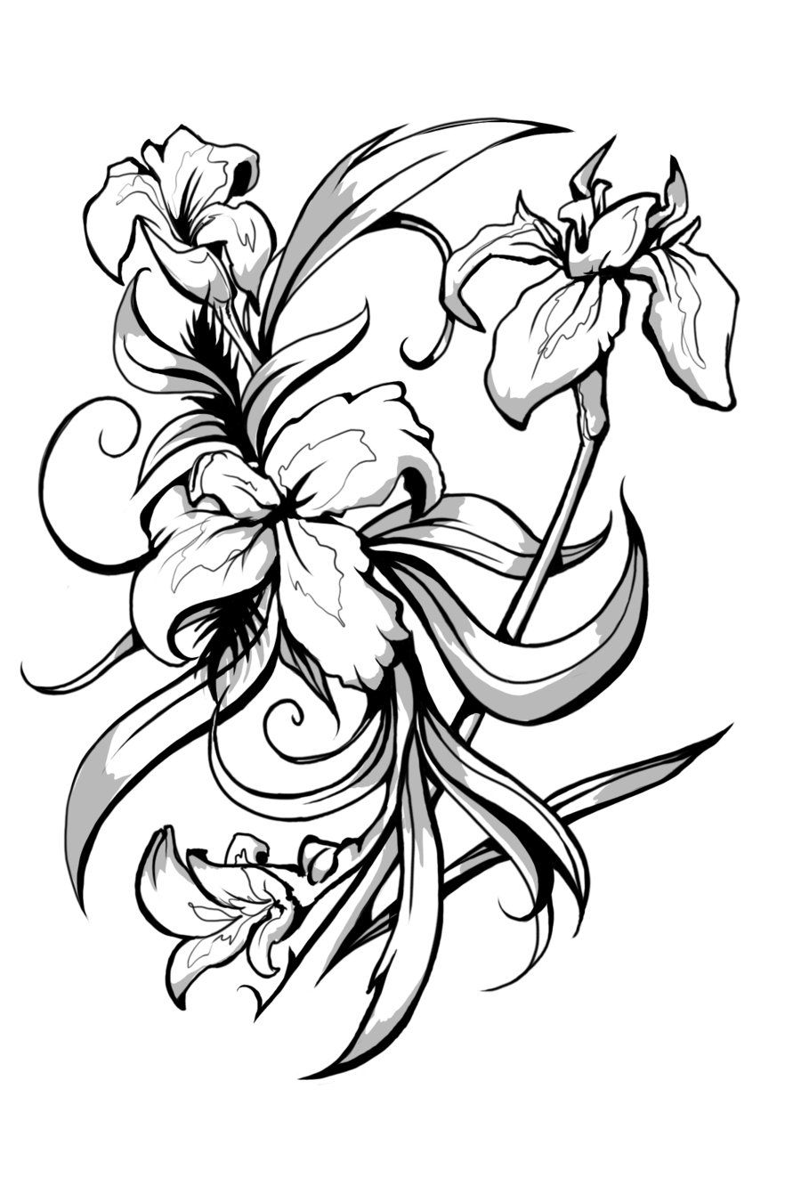Iris clipart black and white jpg black and white library Iris symbol for Faith | Tats | Iris tattoo, Iris flowers, Flower ... jpg black and white library