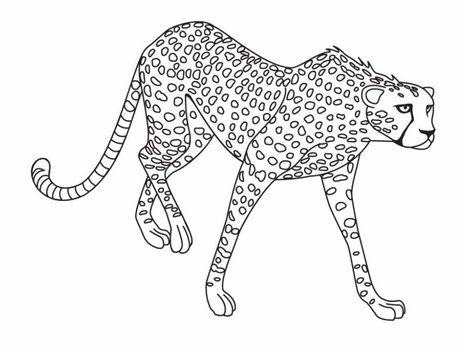 Black and white jaguar clipart clip art transparent Jaguar Png Clipart - Jaguar Black And White Clipart - black jaguar ... clip art transparent