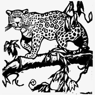 Black and white jaguar clipart clipart free Clipart Jaguar - Amazon Rainforest Animal Clipart , Transparent ... clipart free