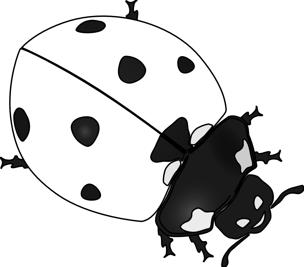Black and white lady bug stem clipart clip black and white Ladybug Drawing Black And White | Clipart Panda - Free Clipart Images clip black and white