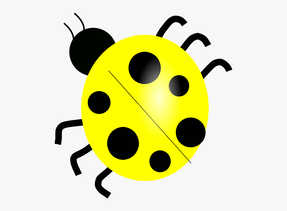 Lady bug clipart black and white siloueete jpg freeuse download Yellow Ladybugs - Lady Bug Black And White Clipart , Transparent ... jpg freeuse download