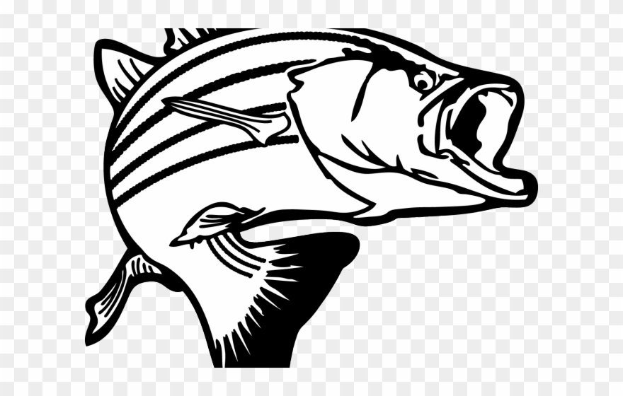 Black and white minnow clipart svg royalty free stock Original Clipart Basic Fish - Pretty Fish Black And White Clipart ... svg royalty free stock