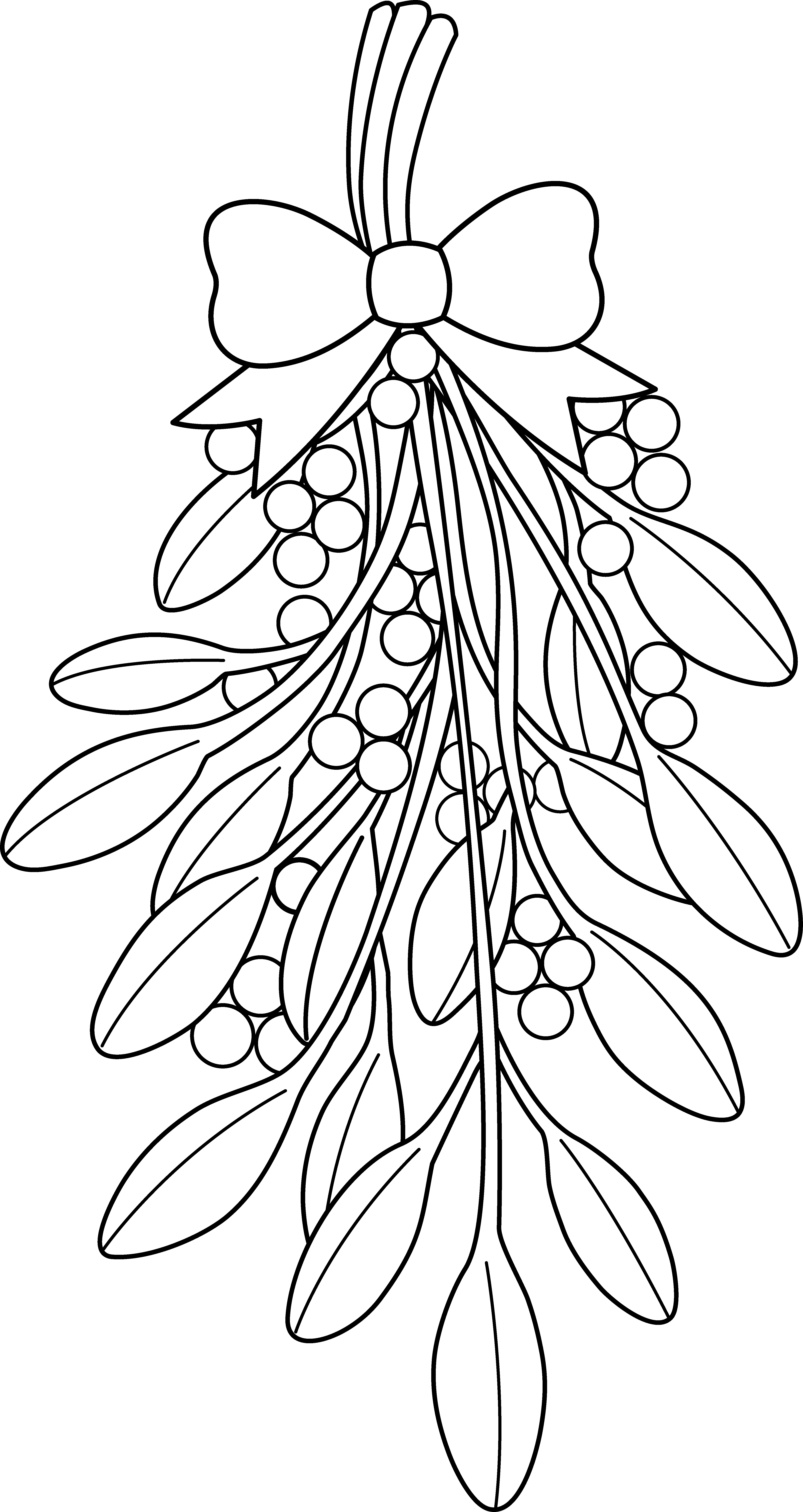 Black and white mistletoe clipart picture transparent library christmas coloring pages | Mistletoe Clipart Black And White ... picture transparent library