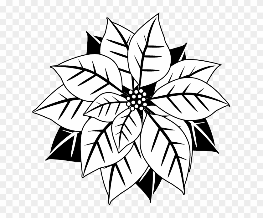 White mistletoe clipart jpg royalty free stock Poinsettia Clipart Flourishes - Black And White Mistletoe, HD Png ... jpg royalty free stock