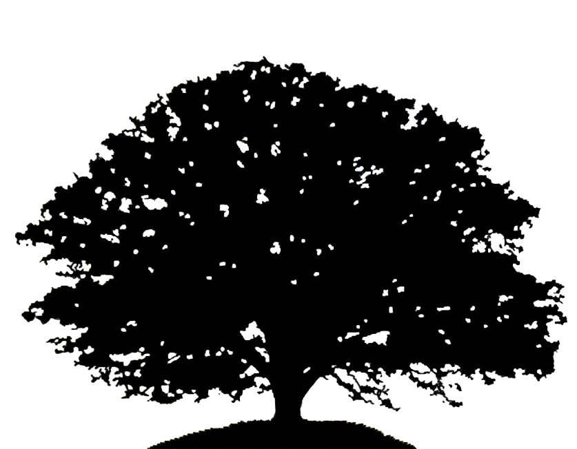 Tall tree silhouette clipart png library stock Oak Tree Silhouette Drawing Clip art - oak 837*652 transprent Png ... png library stock