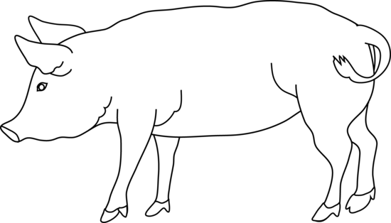 Black and white pig wearing hair bonnett clipart picture Free Pig Line Art, Download Free Clip Art, Free Clip Art on Clipart ... picture