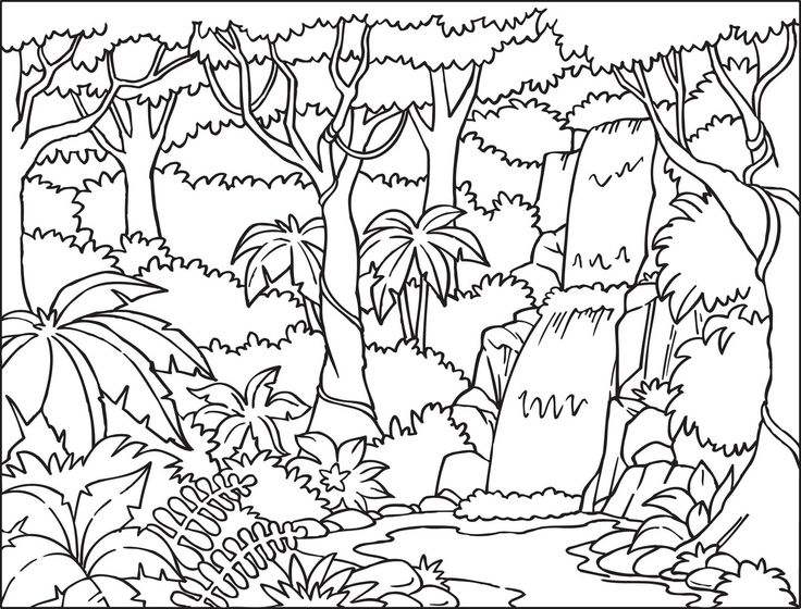 Forest clipart black and white looking up clip art royalty free Jungle Background Clipart Black And White clip art royalty free