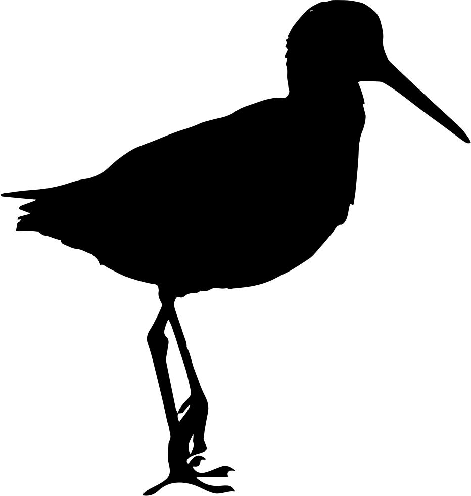 Black and white sandpiper clipart clip free Sandpiper Clip art Vector graphics Bird Silhouette - bird png ... clip free