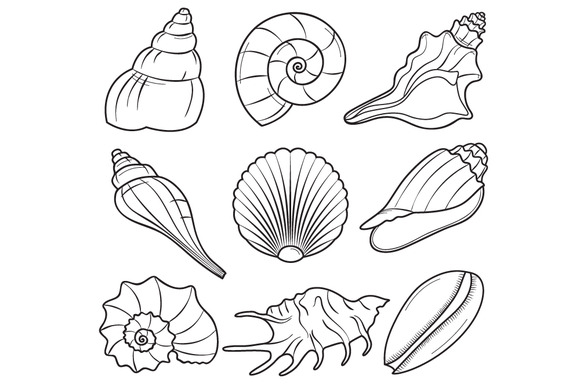Black and white sea shell clipart svg transparent stock Seashell clipart black and white 1 » Clipart Station svg transparent stock