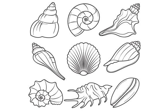 Sea shell clipart black and white jpg transparent library Seashell clipart black and white 1 » Clipart Station jpg transparent library