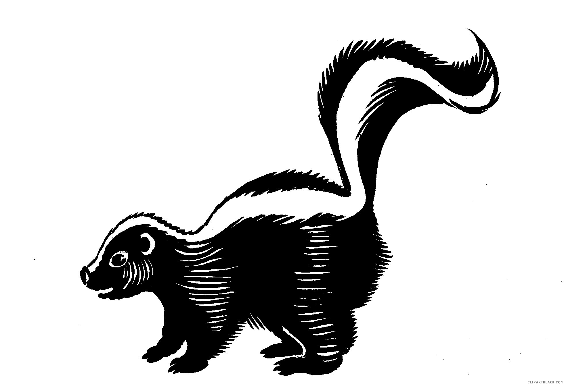 Black and white skunk clipart image download Skunk clipart black and white 4 » Clipart Station image download