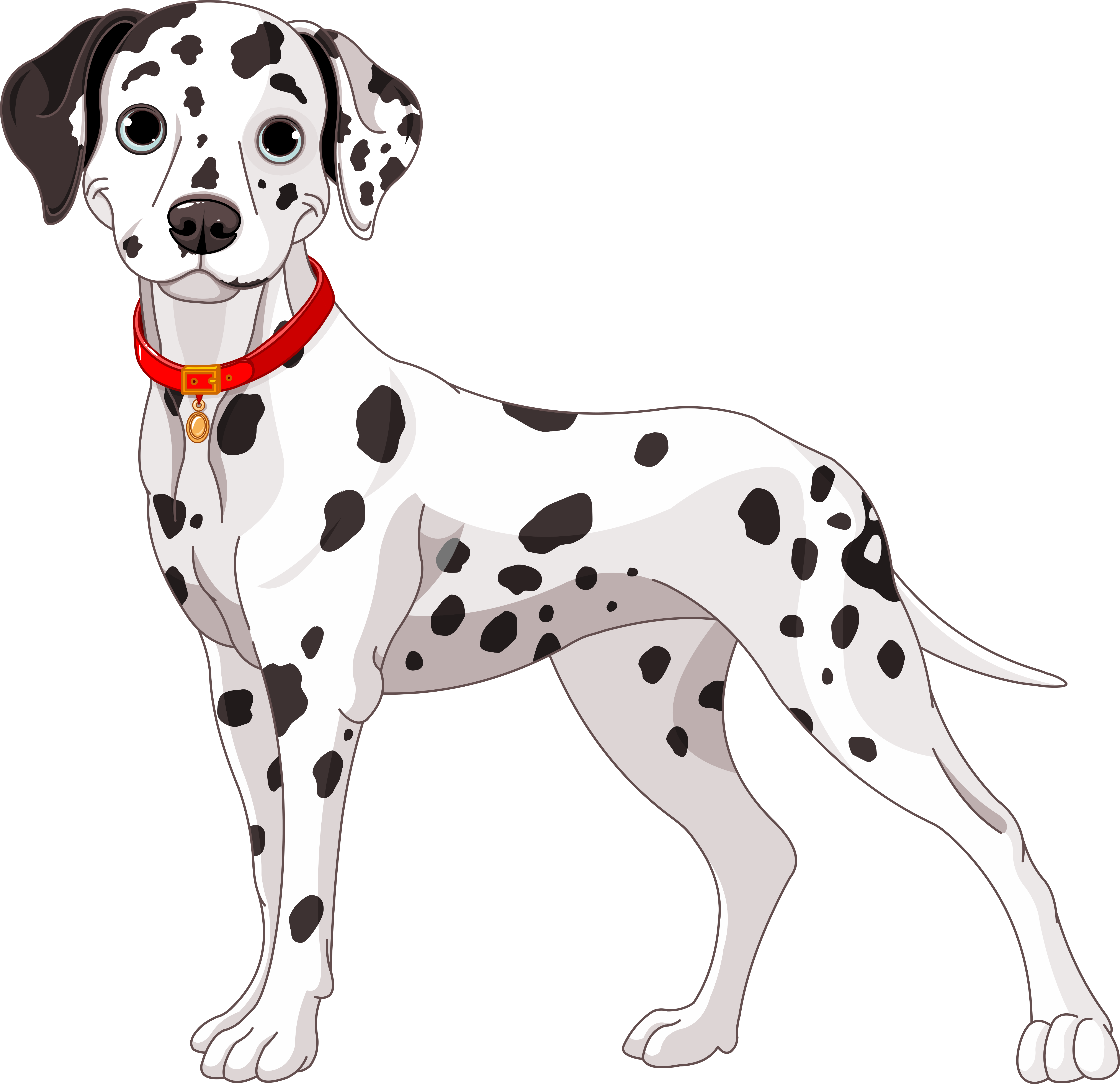 Spotted dog clipart clipart black and white download img-fotki.yandex.ru get 2914 134091466.2ef 0_137312_227f1f8c_orig ... clipart black and white download