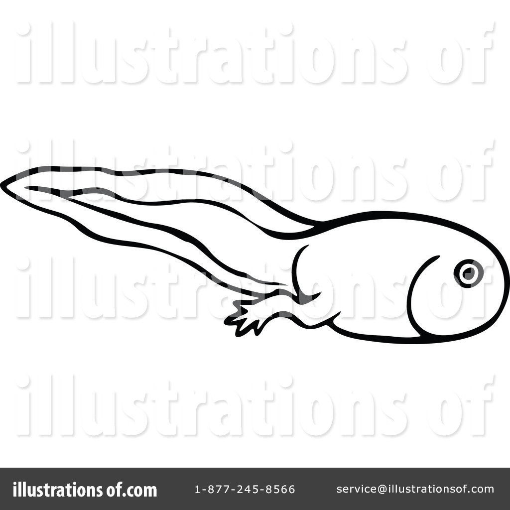 Tadpoles black and white clipart clip art freeuse download Tadpole Clipart | Free download best Tadpole Clipart on ClipArtMag.com clip art freeuse download